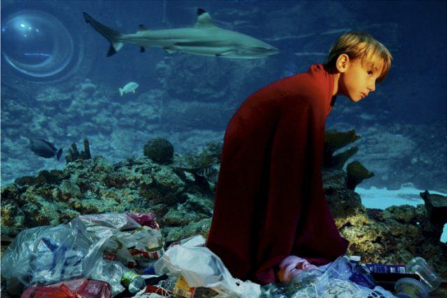Ökologie und Nachhaltigkeit – künstlerische Interventionen